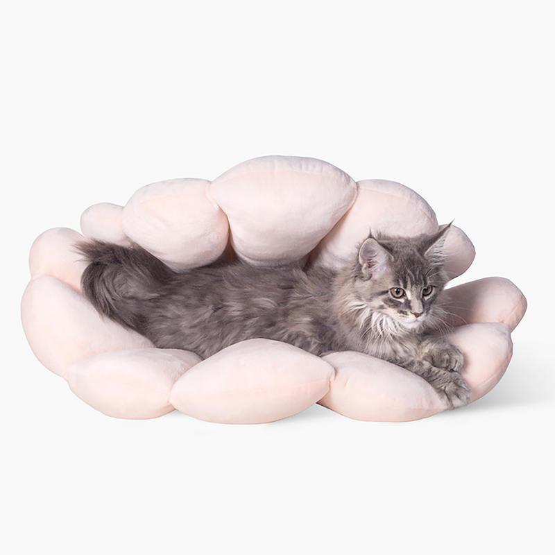 피단스튜디오 조개껍질 침대