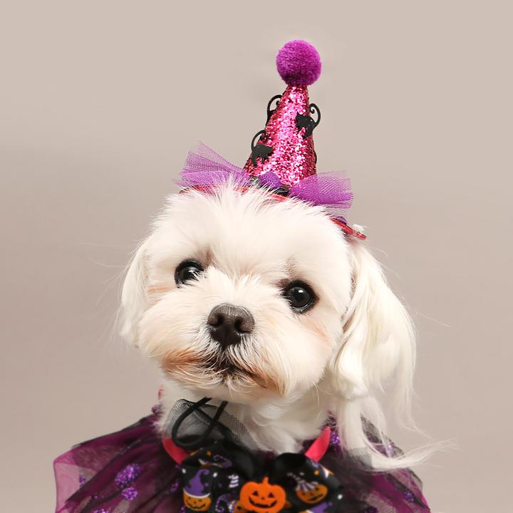 이츠독 할로윈 퍼플 글리터 케이프 + 핑크 모자 세트