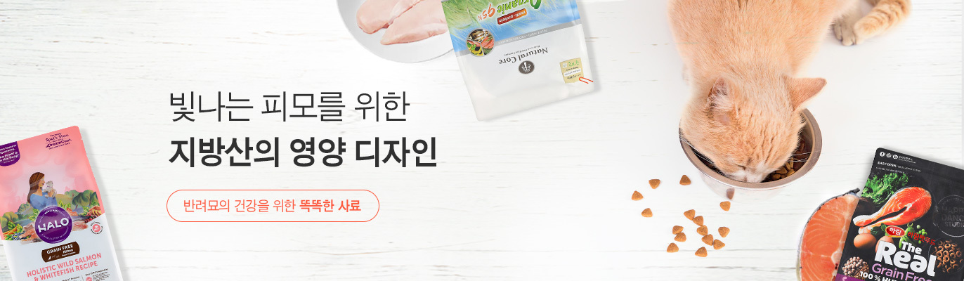 https://img.catpre.com/web/catpre/event/banner/2543/2543_main_banner_2412.jpg